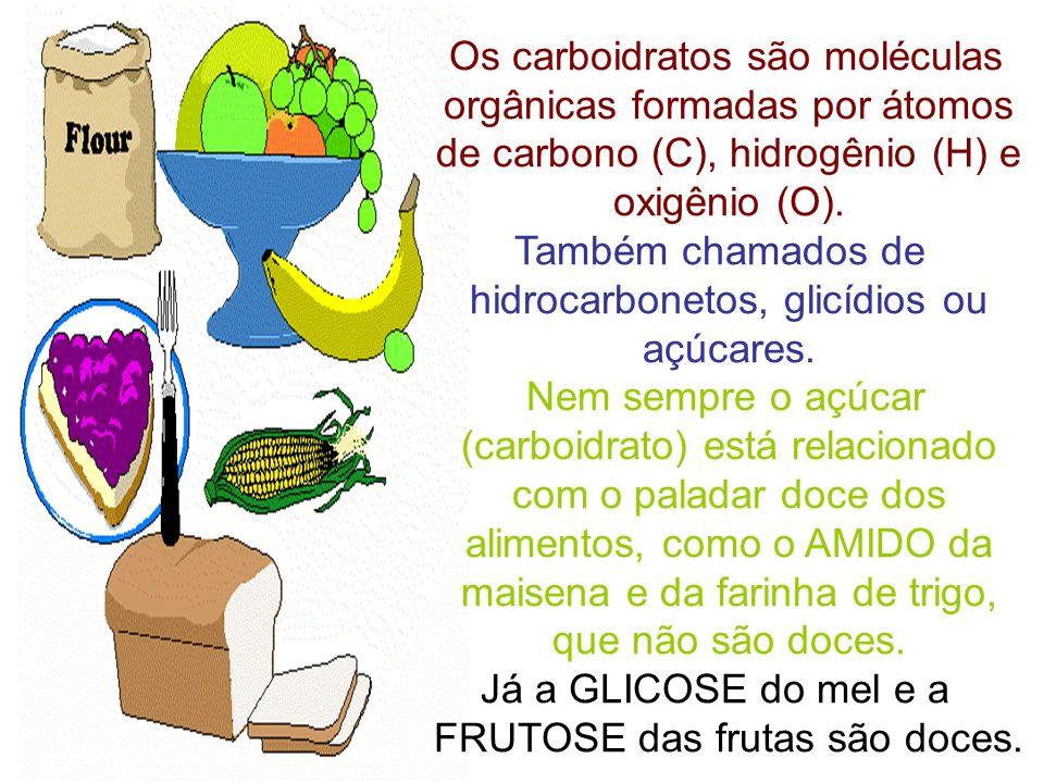 Também chamados de hidrocarbonetos, glicídios ou açúcares.
