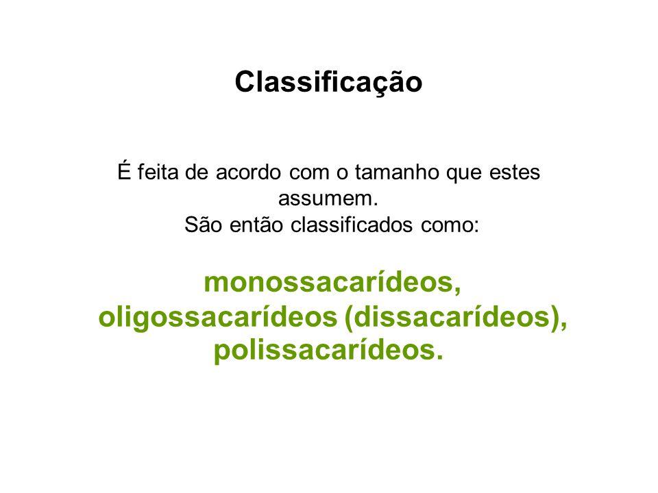 oligossacarídeos (dissacarídeos),