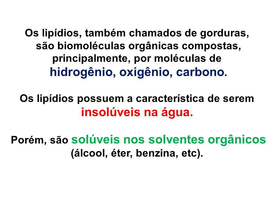 são biomoléculas orgânicas compostas, principalmente, por moléculas de