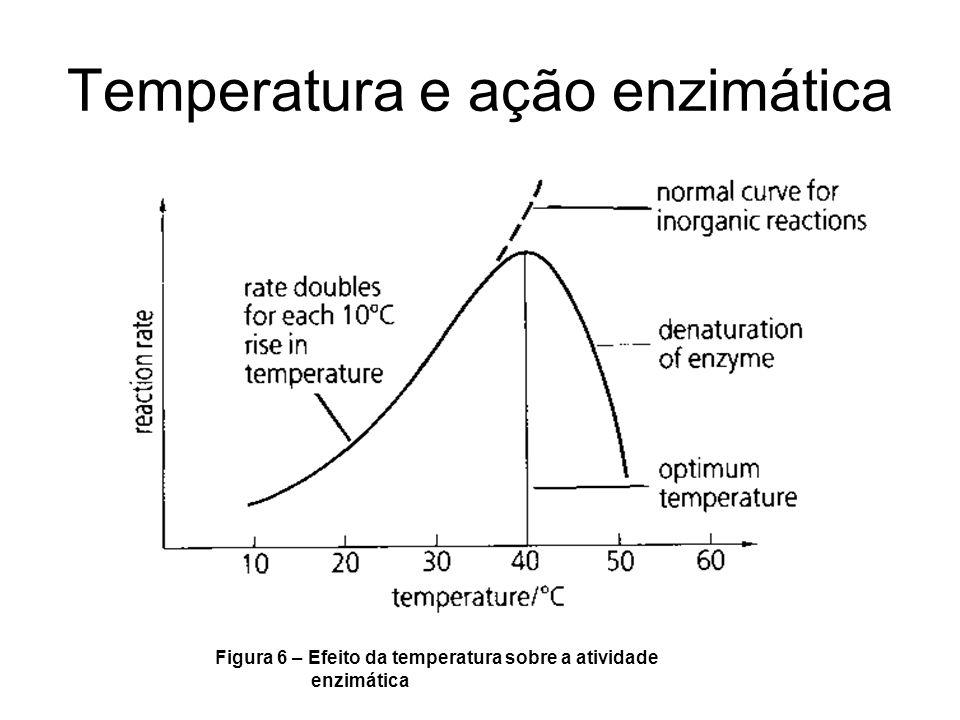 Temperatura e ação enzimática