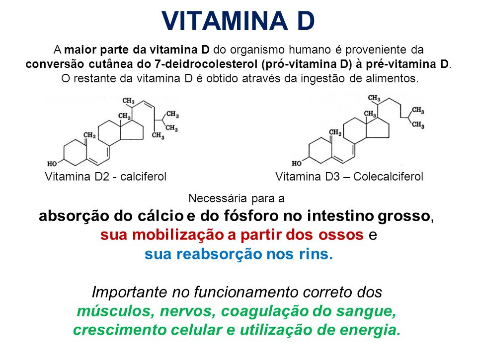 VITAMINA D absorção do cálcio e do fósforo no intestino grosso,