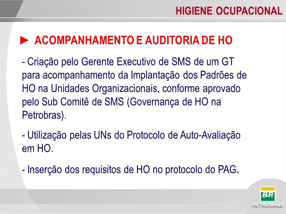 ► ACOMPANHAMENTO E AUDITORIA DE HO