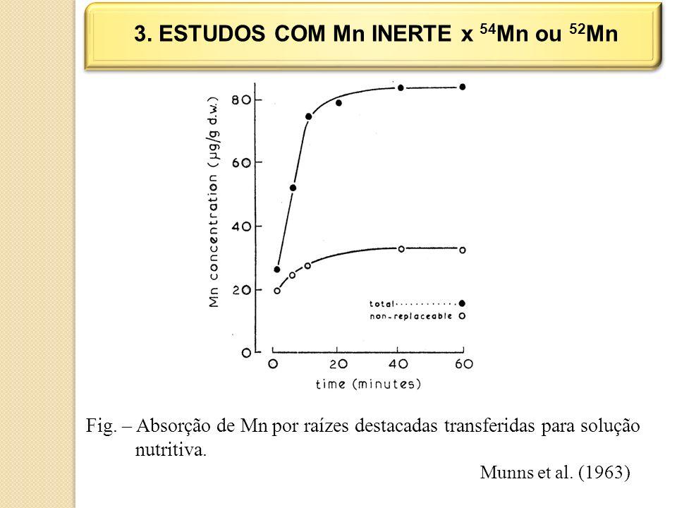 3. ESTUDOS COM Mn INERTE x 54Mn ou 52Mn