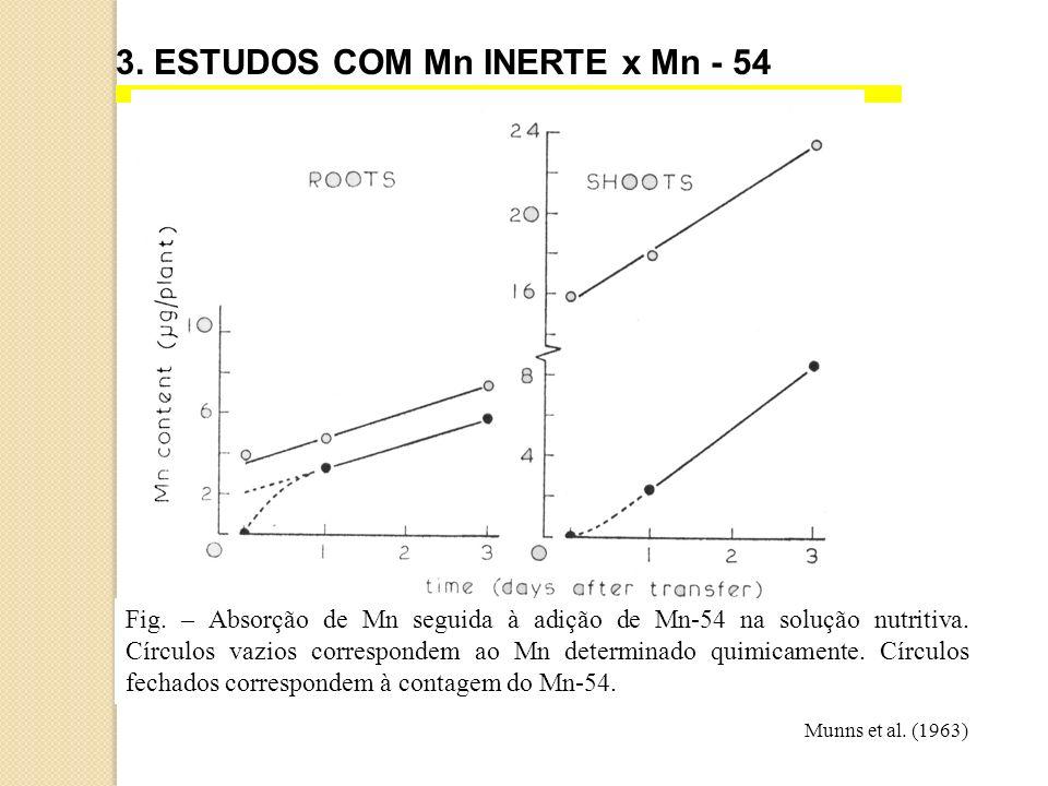3. ESTUDOS COM Mn INERTE x Mn - 54