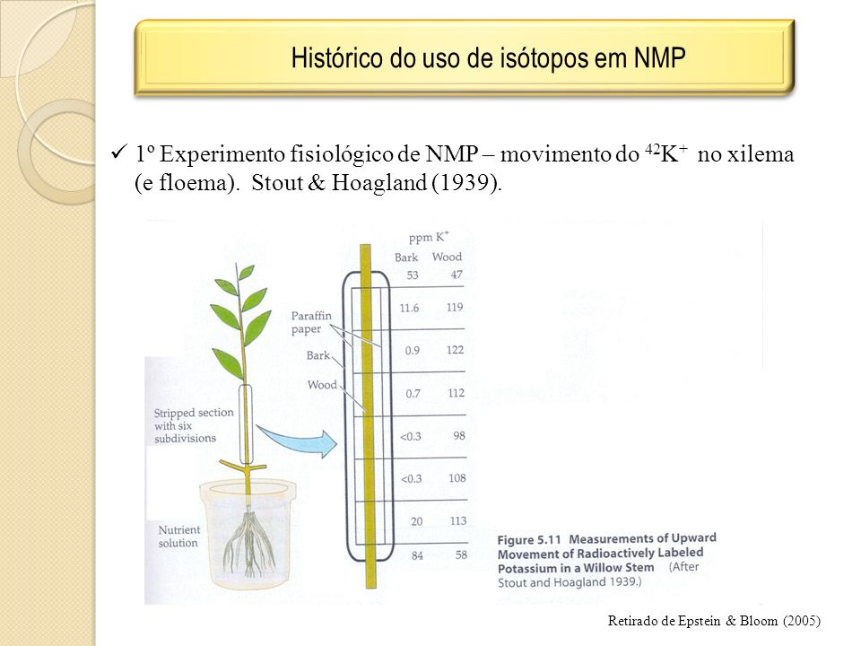 Histórico do uso de isótopos em NMP