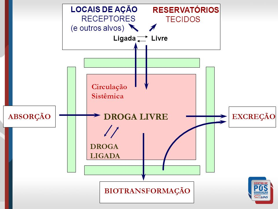LOCAIS DE AÇÃO RECEPTORES (e outros alvos) RESERVATÓRIOS TECIDOS
