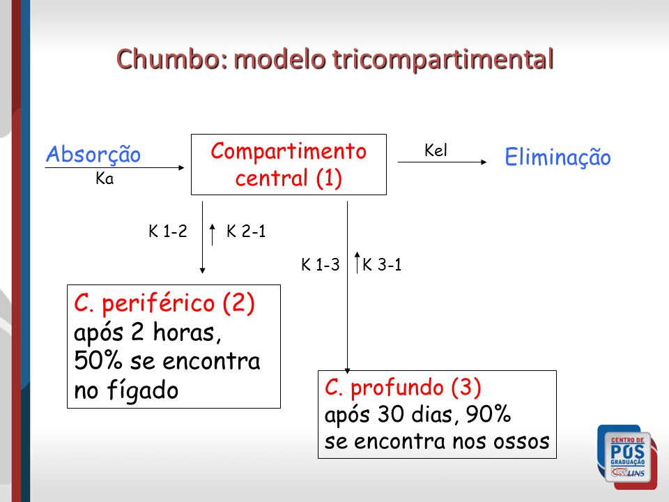 Chumbo: modelo tricompartimental