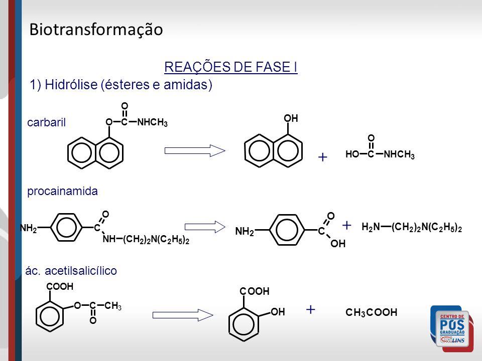 Biotransformação + + + REAÇÕES DE FASE I