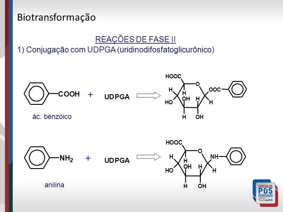 Biotransformação + + REAÇÕES DE FASE II
