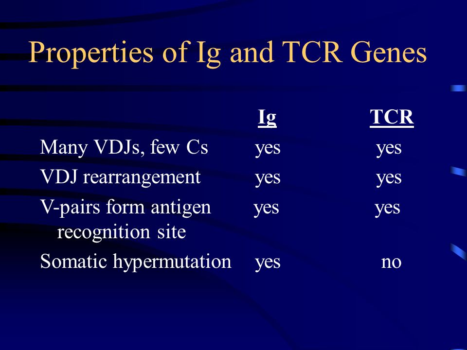 Properties of Ig and TCR Genes