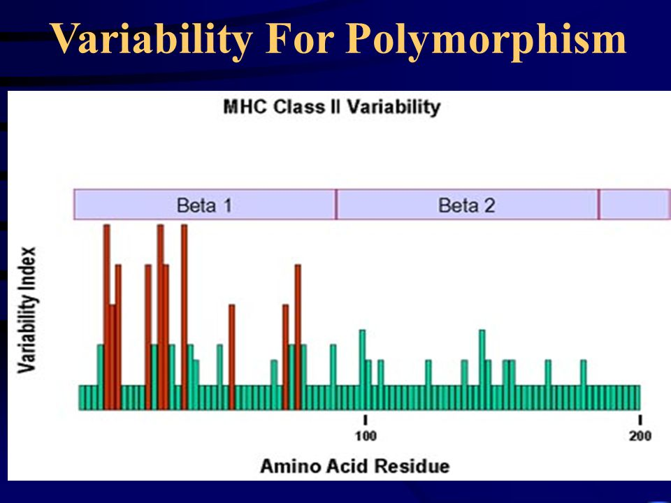Variability For Polymorphism