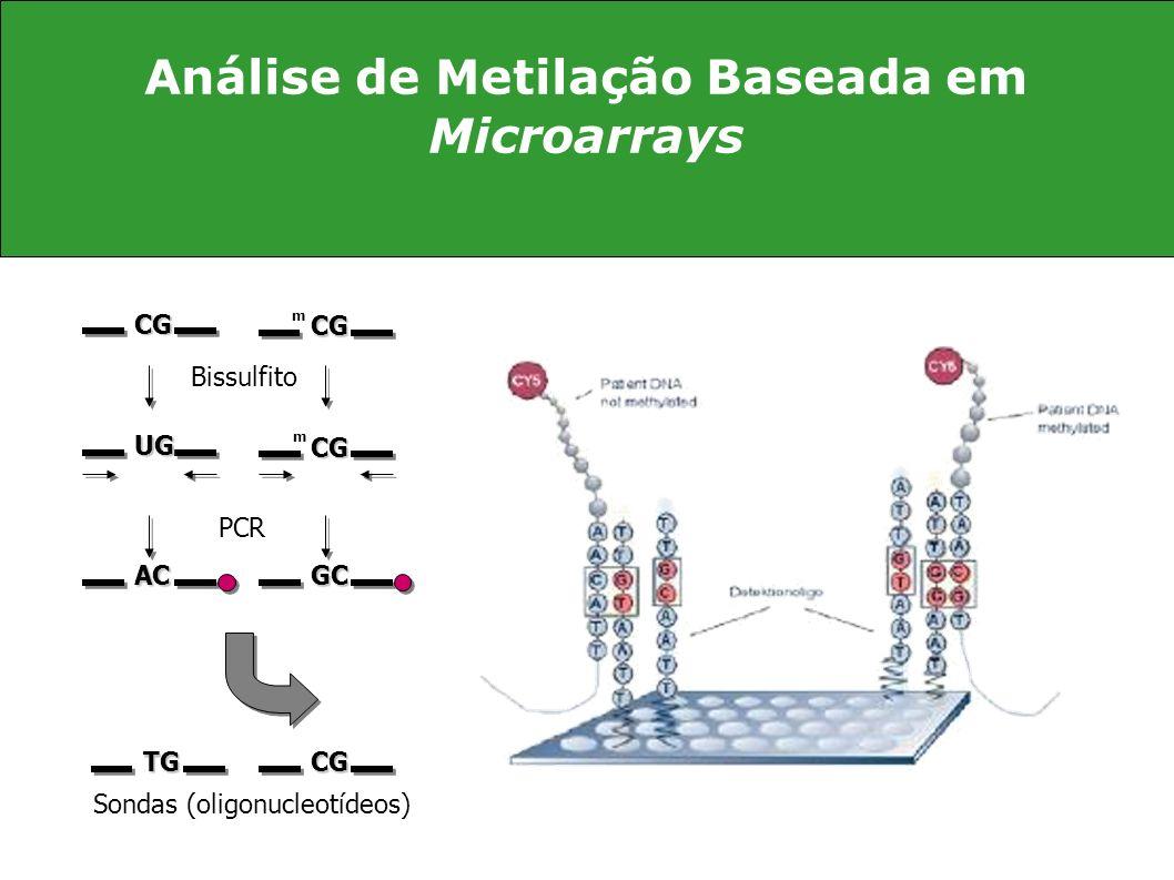 Análise de Metilação Baseada em Microarrays
