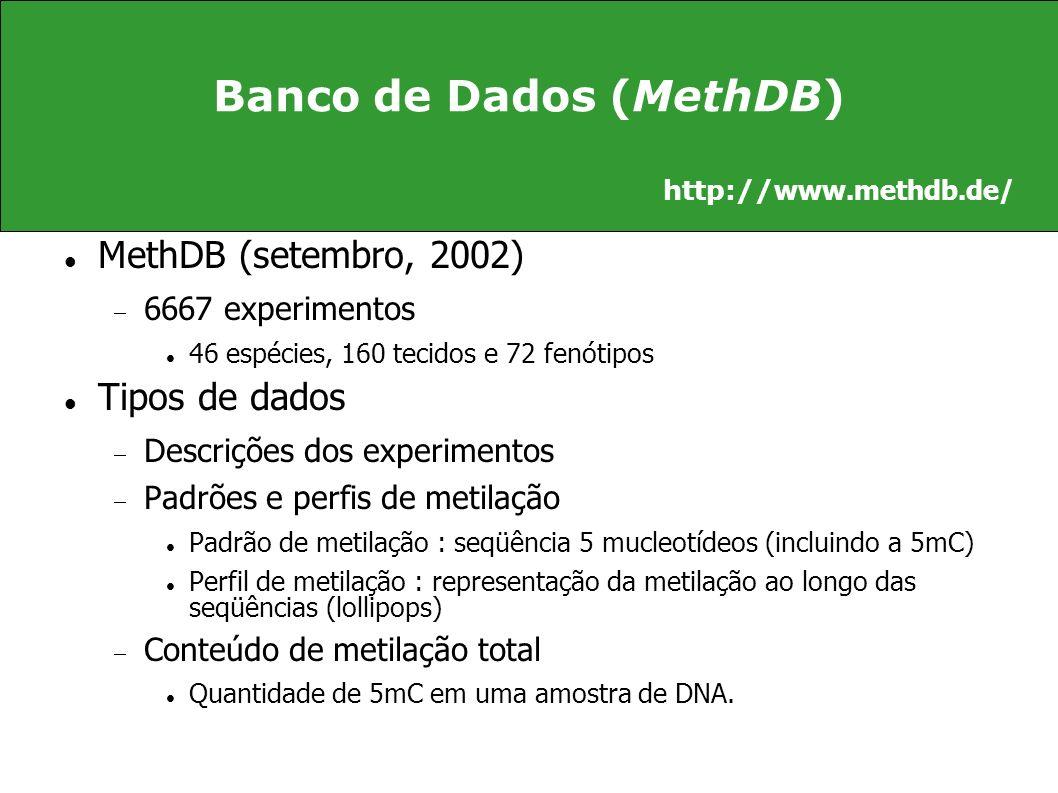 Banco de Dados (MethDB)