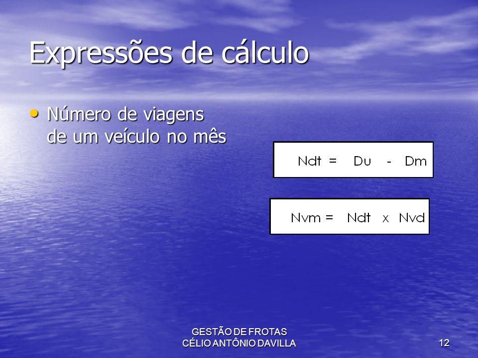 GESTÃO DE FROTAS CÉLIO ANTÔNIO DAVILLA