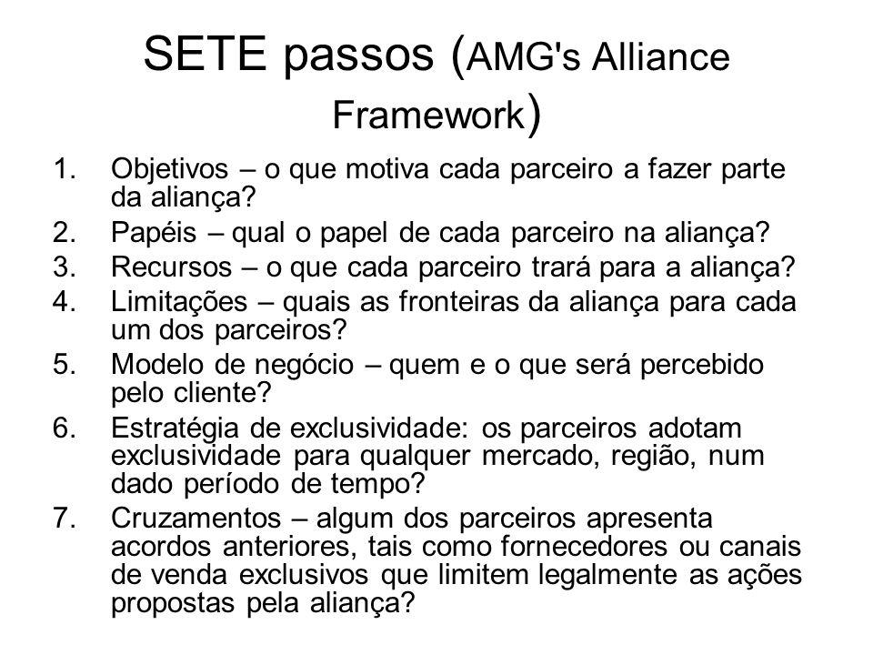 SETE passos (AMG s Alliance Framework)