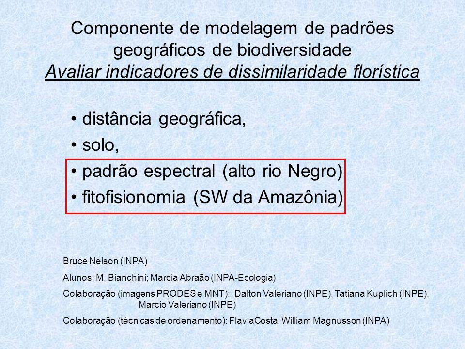 padrão espectral (alto rio Negro) fitofisionomia (SW da Amazônia)