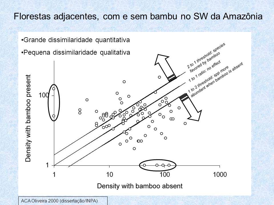 Florestas adjacentes, com e sem bambu no SW da Amazônia