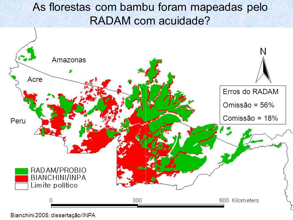 As florestas com bambu foram mapeadas pelo RADAM com acuidade