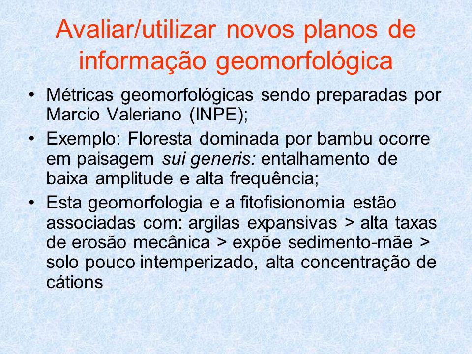 Avaliar/utilizar novos planos de informação geomorfológica