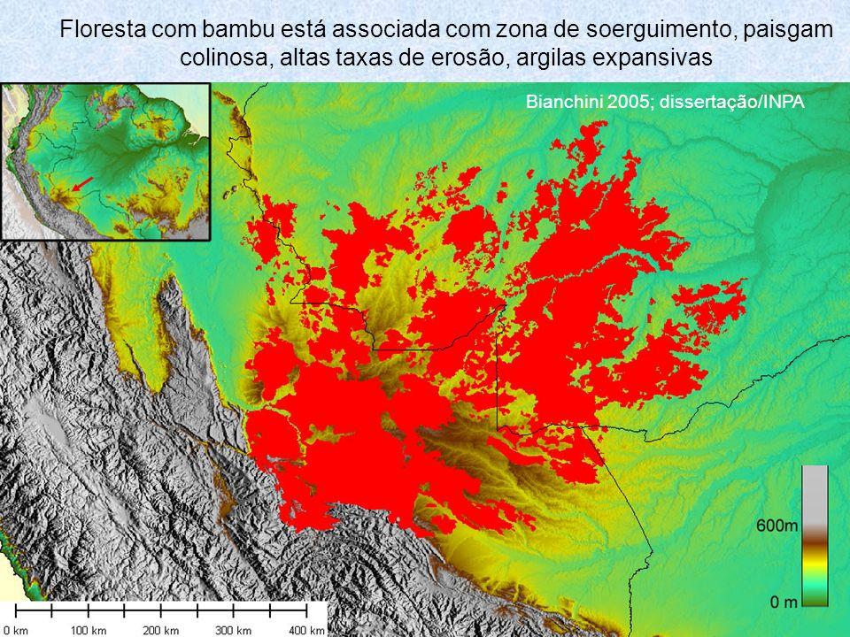 Floresta com bambu está associada com zona de soerguimento, paisgam colinosa, altas taxas de erosão, argilas expansivas