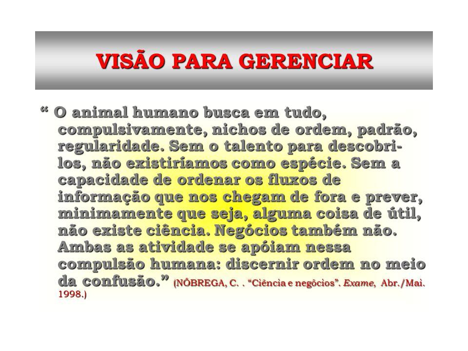 VISÃO PARA GERENCIAR