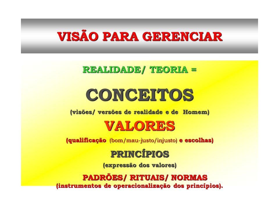 CONCEITOS VALORES VISÃO PARA GERENCIAR PADRÕES/ RITUAIS/ NORMAS