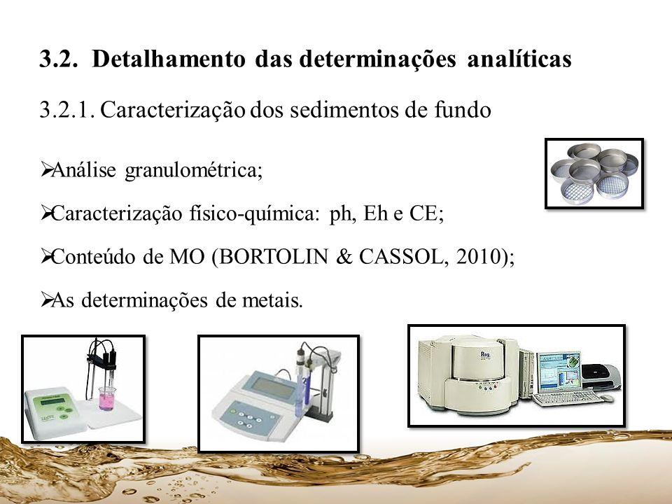 3.2. Detalhamento das determinações analíticas
