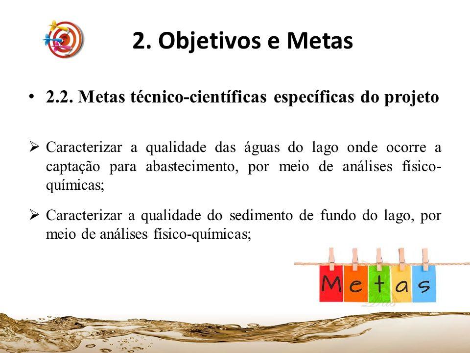 2. Objetivos e Metas 2.2. Metas técnico-científicas específicas do projeto.
