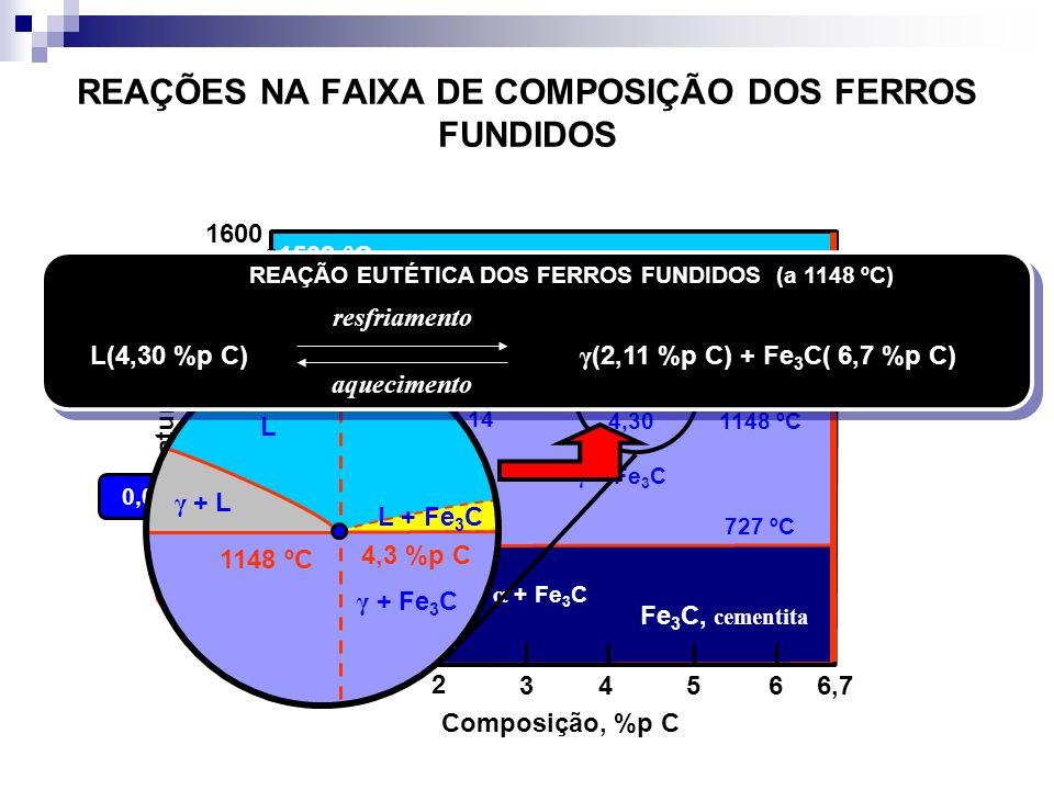 REAÇÕES NA FAIXA DE COMPOSIÇÃO DOS FERROS FUNDIDOS