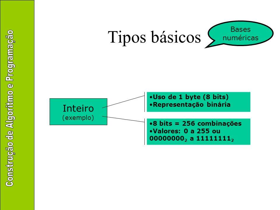 Tipos básicos Inteiro Bases numéricas Uso de 1 byte (8 bits)