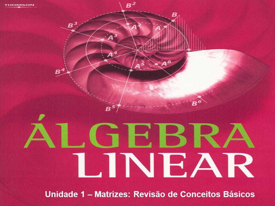 Unidade 1 – Matrizes: Revisão de Conceitos Básicos