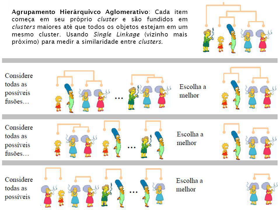 Agrupamento Hierárquivco Aglomerativo: Cada item começa em seu próprio cluster e são fundidos em clusters maiores até que todos os objetos estejam em um mesmo cluster.