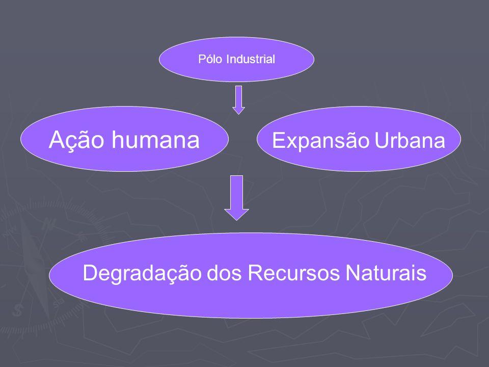 Ação humana Expansão Urbana Degradação dos Recursos Naturais