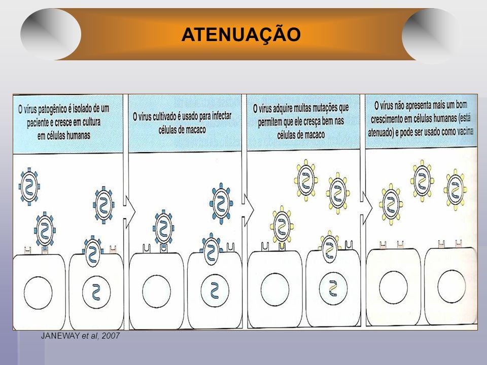 ATENUAÇÃO JANEWAY et al, 2007