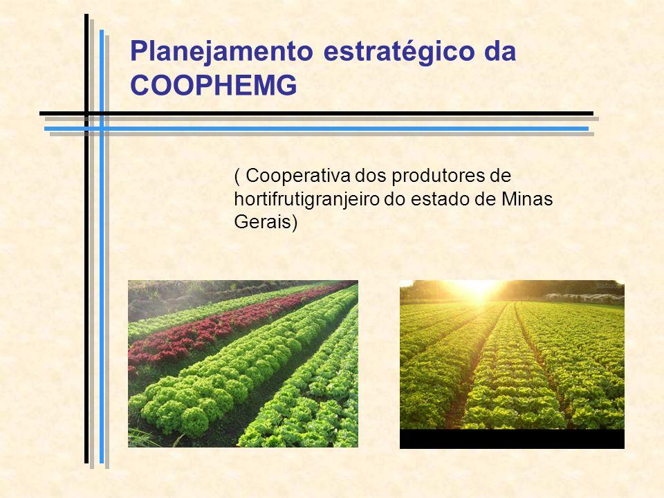Planejamento estratégico da COOPHEMG