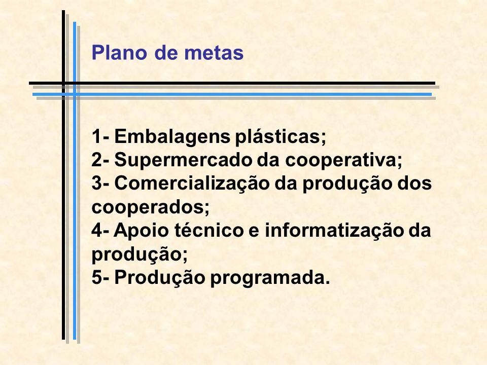 Plano de metas 1- Embalagens plásticas;