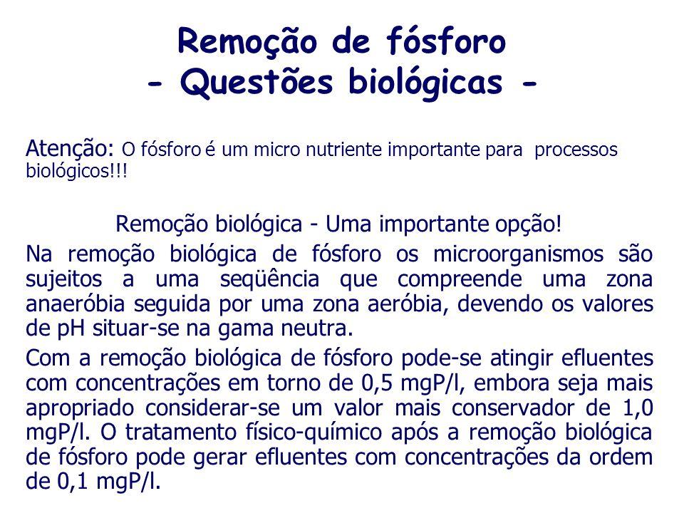 Remoção de fósforo - Questões biológicas -