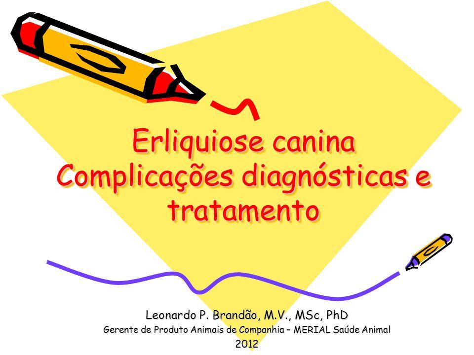 Erliquiose canina Complicações diagnósticas e tratamento