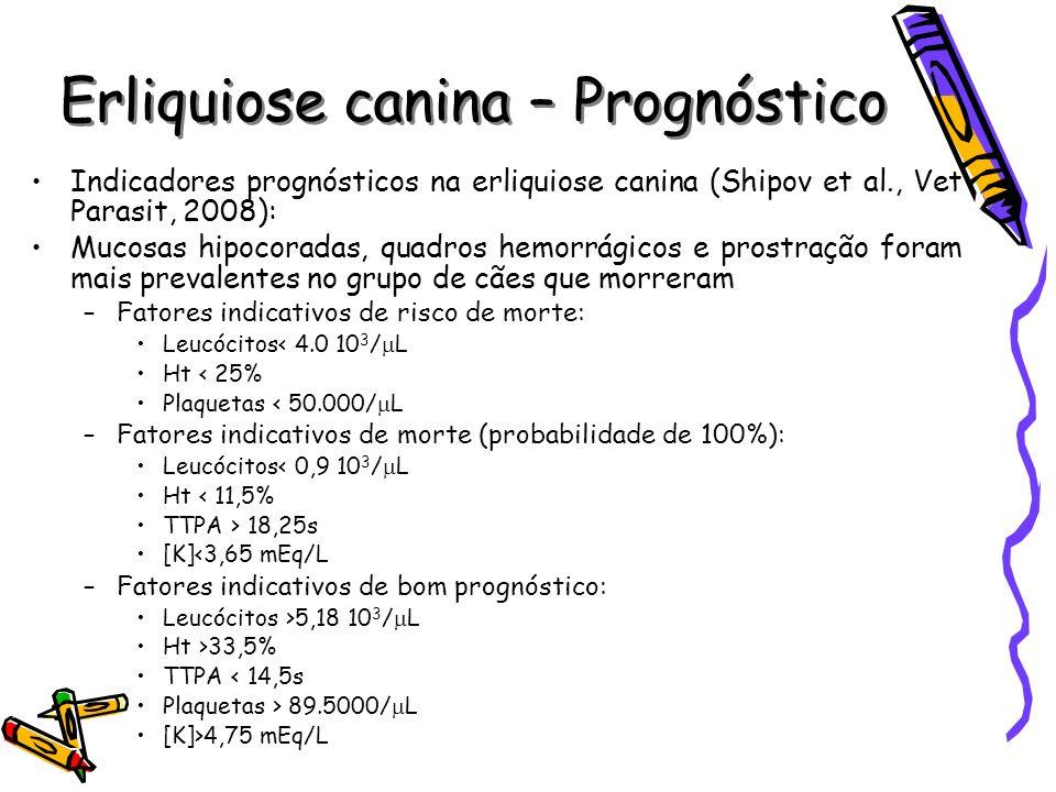 Erliquiose canina – Prognóstico