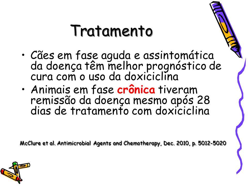 Tratamento Cães em fase aguda e assintomática da doença têm melhor prognóstico de cura com o uso da doxiciclina.