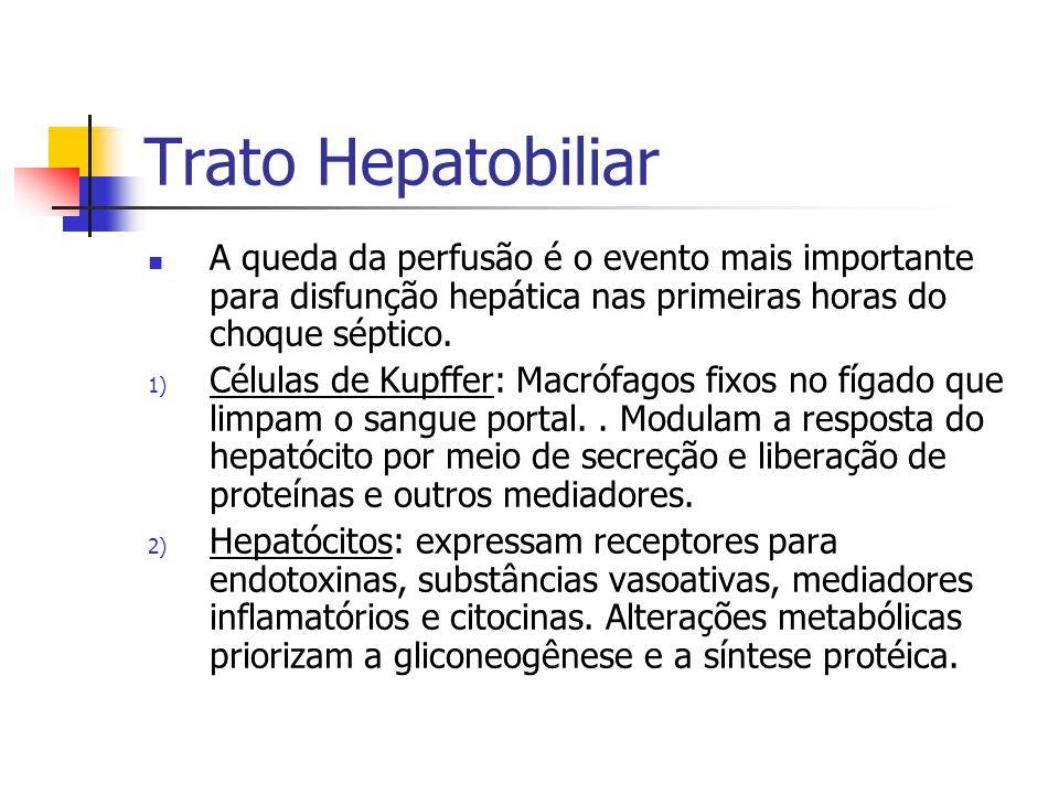 Trato Hepatobiliar A queda da perfusão é o evento mais importante para disfunção hepática nas primeiras horas do choque séptico.