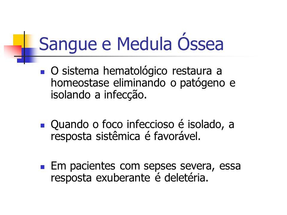 Sangue e Medula Óssea O sistema hematológico restaura a homeostase eliminando o patógeno e isolando a infecção.
