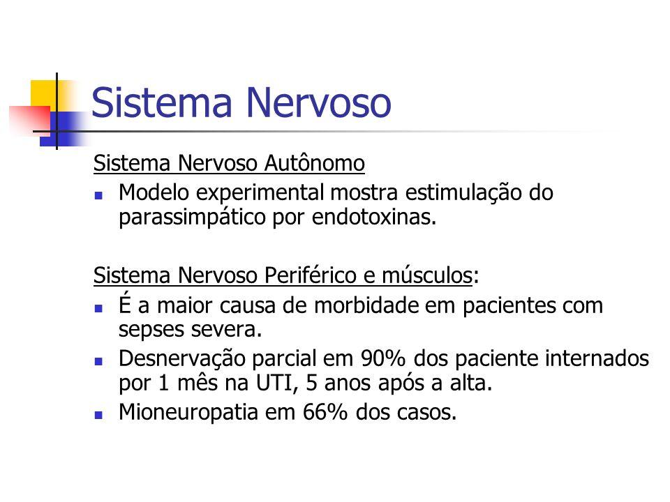 Sistema Nervoso Sistema Nervoso Autônomo