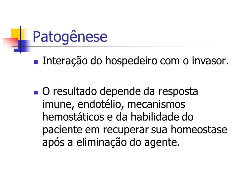 Patogênese Interação do hospedeiro com o invasor.