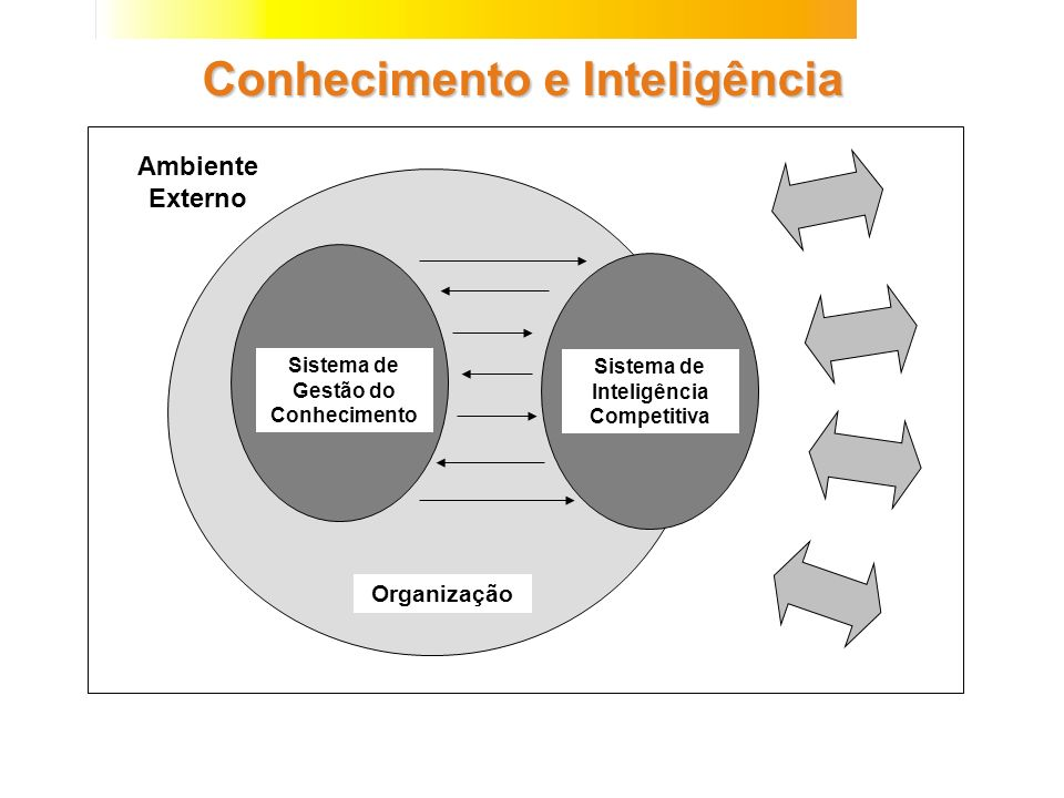 Conhecimento e Inteligência