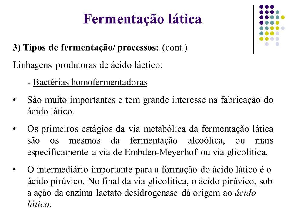 Fermentação lática 3) Tipos de fermentação/ processos: (cont.)
