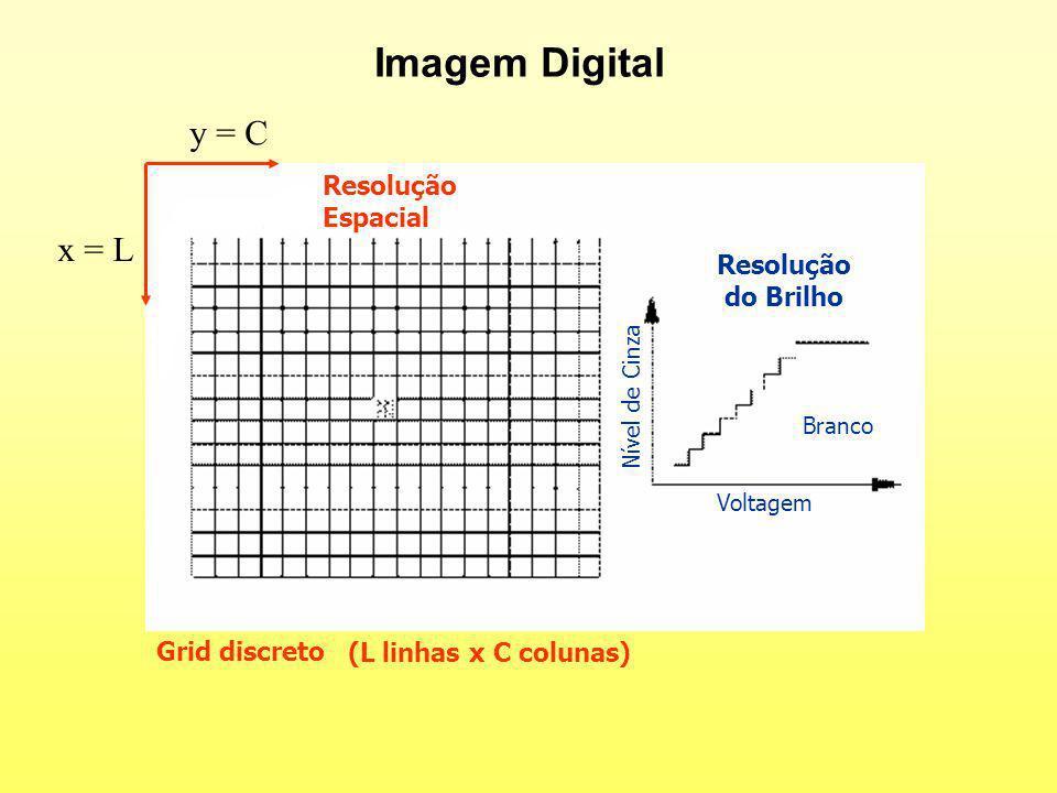 Imagem Digital y = C x = L Resolução Espacial Resolução do Brilho