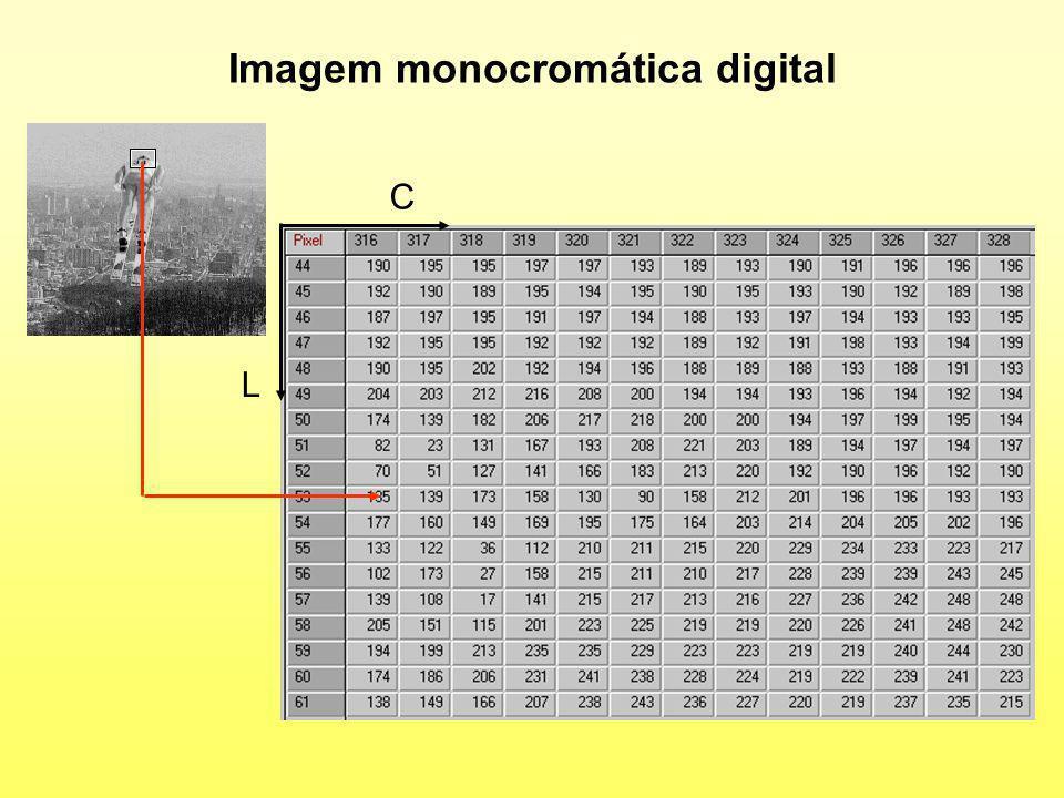 Imagem monocromática digital