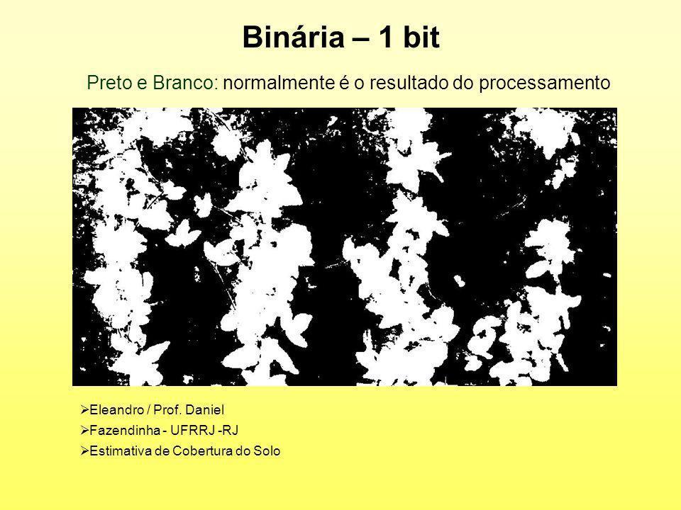 Preto e Branco: normalmente é o resultado do processamento
