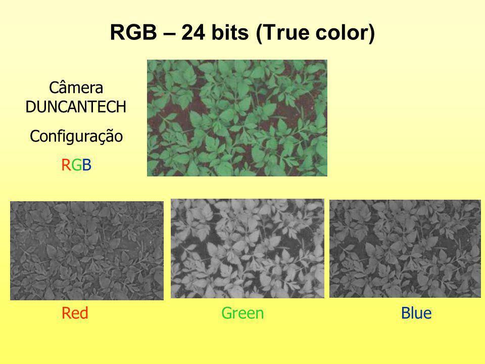 RGB – 24 bits (True color) Câmera DUNCANTECH Configuração RGB Red